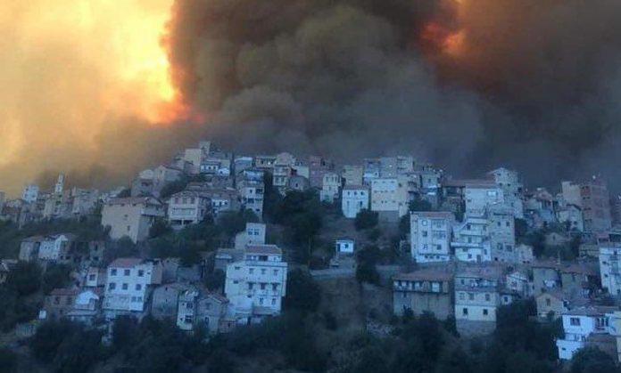 Incendies en Algérie : SM le Roi Mohammed VI propose l'aide du Maroc à Alger